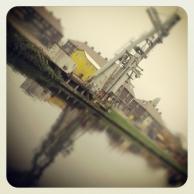 Instagram_cornutus_20121114 (5)