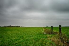 Veen- en Veldendijkpad_cornutus_31