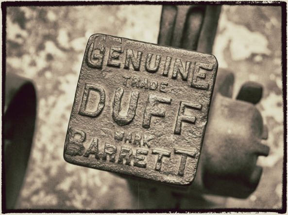 Duff_cornutus