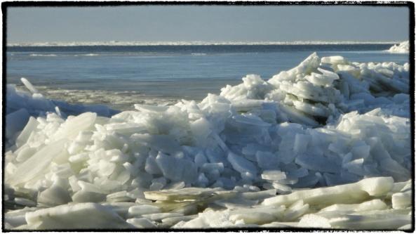 cornutus_ijsschotsen