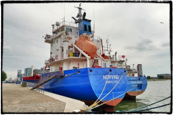 cornutus_norvind_gibraltar