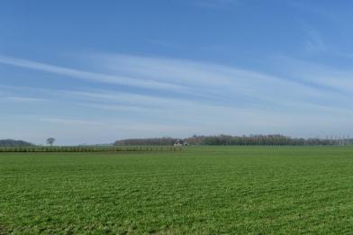 Gaasterland (1)