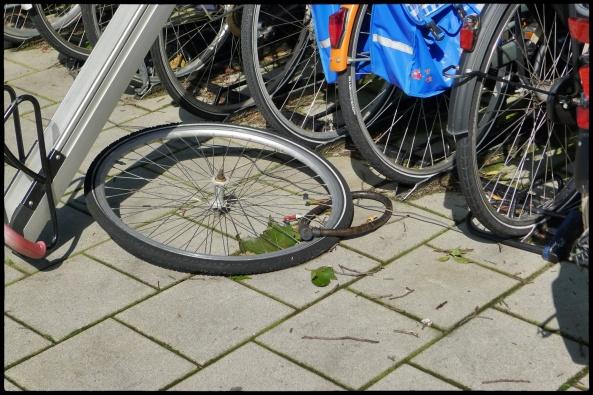Fietswiel_Alkmaar